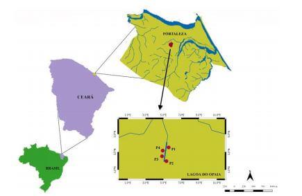 Análise da qualidade da água em ecossistemas lacrustes urbanos na estação seca – Fortaleza/CE