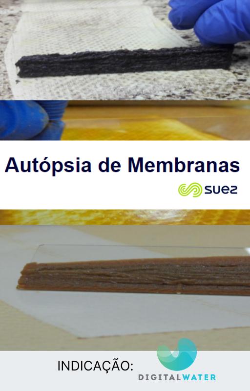 autopsia_membranas_suez