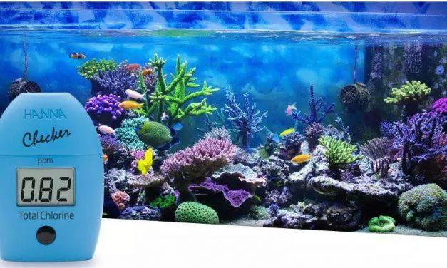 A importância do cloro em aquários e na aquicultura